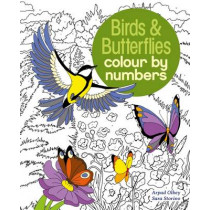 Birds & Butterflies Colour by Numbers by Sara Storino, 9781784286491