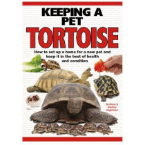 Keeping a Pet Tortoise by A.C. Highfield, 9781842862131