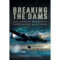 Breaking the Dams by Foster Charles, 9781844156863