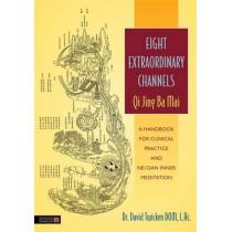 Eight Extraordinary Channels - Qi Jing Ba Mai: A Handbook for Clinical Practice and Nei Dan Inner Meditation by David Twicken, 9781848191488