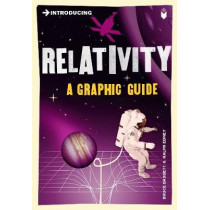 Introducing Relativity: A Graphic Guide by Bruce Bassett, 9781848310575
