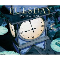 Tuesday by David Wiesner, 9781849394475