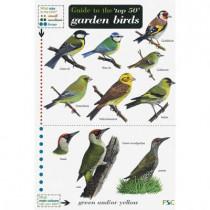 Guide to the Top 50 Garden Birds by Edward Jackson, 9781851532797