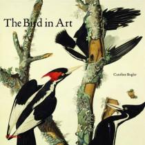 Bird in Art by Caroline Bugler, 9781858945682