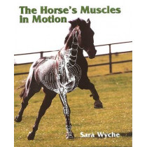 Horse's Muscles in Motion by Sara Wyche, 9781861264565