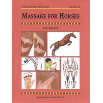 Massage for Horses by Mary W. Bromiley, 9781872082875