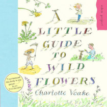 A Little Guide To Wild Flowers by Charlotte Voake, 9781903919118
