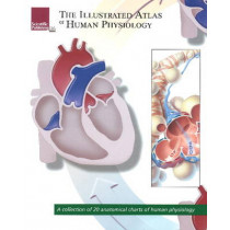 Illustrated Atlas of Human Physiology: A Collection of 20 Anatomical Charts of Human Physiology by Scientific Publishing, 9781932922981
