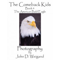 The Comeback Kids, Book 4, The American Bald Eagle by John D Weigand, 9781935118015