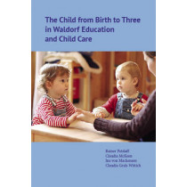 The Child from Birth to Three in Waldorf Education and Child Care by Rainer Patzlaff, 9781936849000