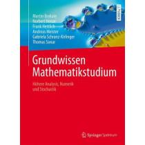 Grundwissen Mathematikstudium: Hoehere Analysis, Numerik Und Stochastik by Martin Brokate, 9783642450778