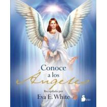 Conoce a Los Angeles by Eva E White, 9788478088577