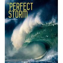 The Perfect Storm by Ornella D'Alessio, 9788854405769