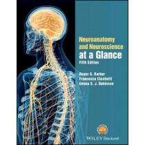 Neuroanatomy and Neuroscience at a Glance by Roger A. Barker, 9781119168416