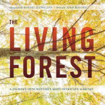 The Living Forest: A Journey Into Nature's Most Intricate Habitat by Robert Llewellyn, 9781604697124