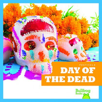 Day of the Dead by Rebecca Pettiford, 9781620315859