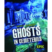 Ghosts in Cemeteries by Lisa Owings, 9781626174276