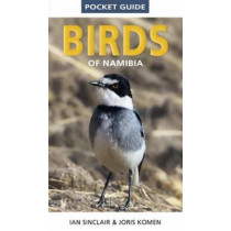 Pocket Guide to Birds of Namibia by Ian Sinclair, 9781775845225