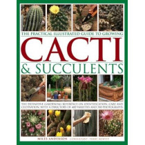 Practical Illustrated Guide to Growing Cacti & Succulents by Miles Anderson, 9781843093558