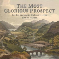 The Most Glorious Prospect by Bettina Harden, 9781910862629