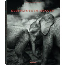 Elephants in Heaven by Joachim Schmeisser, 9783961710478