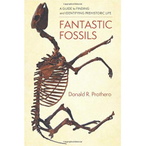 Fantastic Fossils: A Guide to Finding and Identifying Prehistoric Life by Donald R. Prothero, 9780231195782