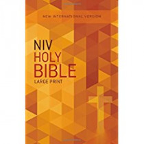 NIV, Outreach Bible, Large Print, Paperback by Zondervan, 9780310446361
