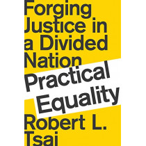 Practical Equality: Forging Justice in a Divided Nation by Robert Tsai, 9780393652024