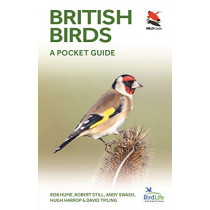 British Birds: A Pocket Guide by Rob Hume, 9780691181677