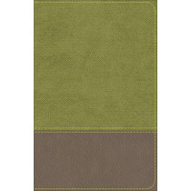 KJV Study Bible for Boys Olive/Brown LeatherTouch by Larry Richards, 9780801093777