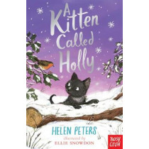 A Kitten Called Holly by Helen Peters, 9780857639639