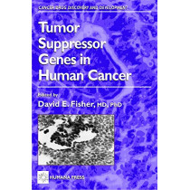Tumor Suppressor Genes in Human Cancer by David E. Fisher, 9780896038073