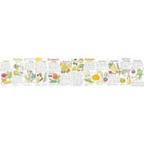 Seasonal Fruit and Vegetables Wallchart, 9780953622276