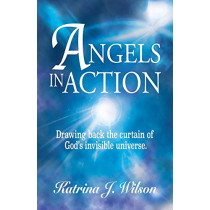 Angels in Action: Drawing back the curtain of God's invisible universe. by Katrina J Wilson, 9780988296213