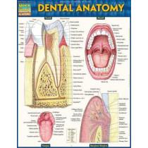 Dental Anatomy by Vincent Perez, 9781423233107