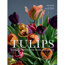 Tulips: Beautiful Varieties for Home and Garden by Jane Eastoe, 9781423651291