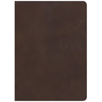 CSB Study Bible, Brown Genuine Leather, Indexed by CSB Bibles by Holman CSB Bibles by Holman, 9781433648083