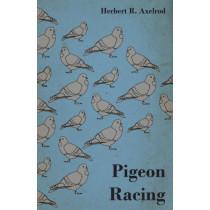 Pigeon Racing by Herbert R. Axelrod, 9781446543931