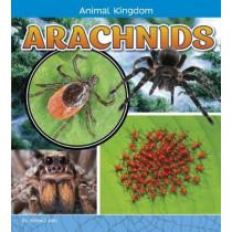 Arachnids by Pamela Jain Dell, 9781474734653