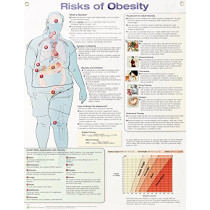 Risks of Obesity Anatomical Chart Laminated by Anatomical Chart Company, 9781496384737