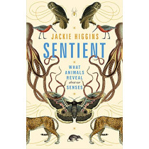 Sentient: A Journey Through the Sensory Worlds of Humans and Other Animals by Jackie Higgins, 9781529030778