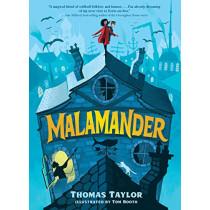 Malamander by Thomas Taylor, 9781536215151