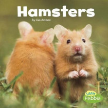 Hamsters (Our Pets) by Lisa J. Amstutz, 9781543501667