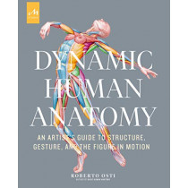 Dynamic Human Anatomy: An Artist's Guide to Structure, Gesture, and the Figure in Motion  by Roberto Osti, 9781580935517