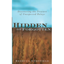 Hidden, Not Forgotten: Discovering the Treasure of Unexpected Delays by Rebecca Sheffield, 9781581580884