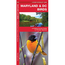 Maryland & DC Birds: A Folding Pocket Guide to Familiar Species by James Kavanagh, 9781583551516