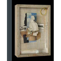 Birds of a Feather - Joseph Cornell's Homage to Juan Gris by Mary Clare McKinley, 9781588396273