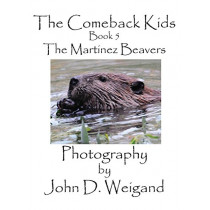 The Comeback Kids, Book 5, the Martinez Beavers by John D Weigand, 9781614772125