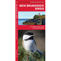 New Brunswick Birds: A Folding Pocket Guide to Familiar Species by James Kavanagh, 9781620053645