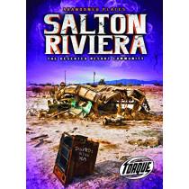 Salton Riviera: The Deserted Resort Community by Lisa Owings, 9781644871638